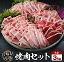 【ふるさと納税】豚焼肉バラエティー3kg&粗挽きウインナー180gセット《合計3kg以上》都農町加工...
