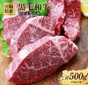 【ふるさと納税】宮崎県産黒毛和牛ヒレステーキ(計500g)都農町加工品