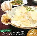 【ふるさと納税】☆宮崎県産筍☆ たけのこ水煮2kg