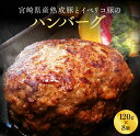 【ふるさと納税】宮崎県産熟成豚とイベリコ豚のハンバーグ120g×8個
