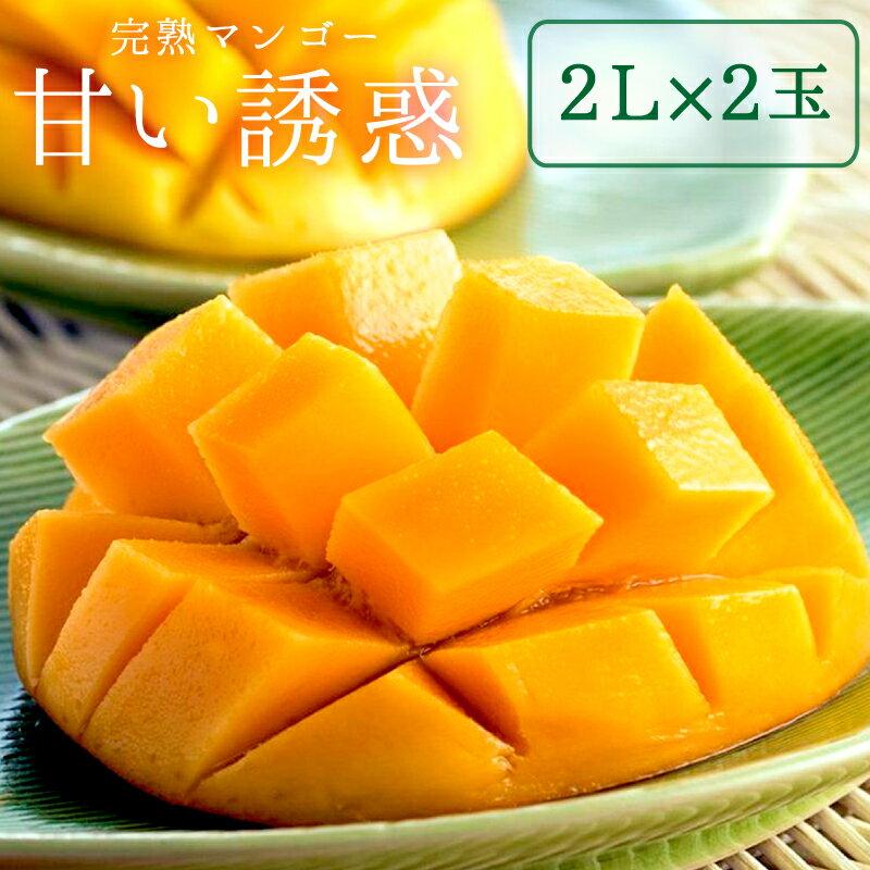 【ふるさと納税】Q-1 完熟マンゴー「甘い誘惑」2Lサイズ2玉