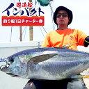 【ふるさと納税】U-2 遊漁船インパクト 釣り船一日チャータ...