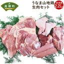 【ふるさと納税】うなま山地鶏生肉セット 約2.2kg 宮崎県...
