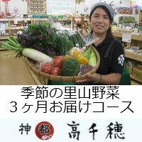 【ふるさと納税】A-7 季節の里山野菜 3ヶ月お届けコース