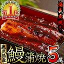 【ふるさと納税】うなぎ生産量日本一!鹿児島産鰻蒲焼の贅沢5尾...