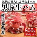 【ふるさと納税】黒豚生ハム切落とし100gx8P(計800g)
