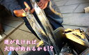 【ふるさと納税】錦江湾で船釣り!海の幸満喫日帰りプラン(2名様)