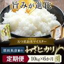【ふるさと納税】米 お米 10kg × 6ヶ月 定期便 五つ...