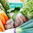 【ふるさと納税】採れたて冬野菜BOX 1月〜2月末順次お届け...