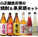 【ふるさと納税】焼酎・梅酒セット 小正醸造