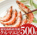 【ふるさと納税】鹿児島県産 冷凍クルマエビ 500g 計20