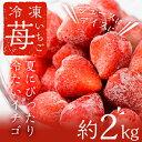 【ふるさと納税】冷凍いちご(1000g×2) 計2,000g...