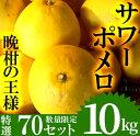 【ふるさと納税】《期間限定!2021年3月〜3月末迄の間に発送予定》【数量限定】柑橘類のサワーポメロ(10kg・L〜3L:10個〜23個)【つとむじぃグレープの森】