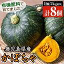 【ふるさと納税】《数量限定》鹿児島県産!かぼちゃの詰め合わせ 8個(1個あたり2kg前後・計およそ1...