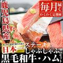 【ふるさと納税】毎月届く わくわく定期便(肉)鹿児島県産黒毛...