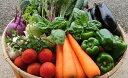 【ふるさと納税】「極野菜」 旬の極上お野菜セット