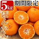 ショッピングカンフル 【ふるさと納税】<先行予約受付中!2021年2月中に発送予定>ぽんかん5kg!鹿児島の温暖な気候や特性を活かし栽培したポンカンは柑橘の爽やかな香りと甘さが特徴♪1箱5kgでお届け【森農園】