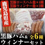 【ふるさと納税】鹿児島県産の黒豚と白豚を使った全6種類 ハム・ウィンナーセット 計400g以上【エーエフ】
