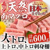 【ふるさと納税】南マグロ極みセット【新洋水産】