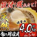 【ふるさと納税】【ただいま!増量中】ホタテより味が濃い!獲れ...