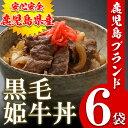 【ふるさと納税】鹿児島県産 黒毛和牛丼(...