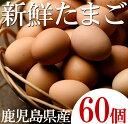 【ふるさと納税】薩摩ヤブサメ酵素卵60個