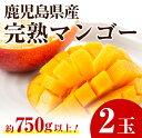 【ふるさと納税】マンゴー 2玉【JAさつま日置北部営農センタ