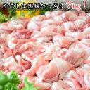 【ふるさと納税】限定!九州産豚コマ切れ B-055
