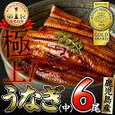 【ふるさと納税】鹿児島県大隅産!うなぎの蒲焼き6尾<計780...