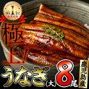 【ふるさと納税】鹿児島県大隅産!うなぎの蒲焼き8尾<計1.2...