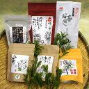 【ふるさと納税】茶畑直送 飲み比べ!バラエティーセット A-066