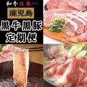 【ふるさと納税】お肉の定期便A 【ナンチク】 C-503