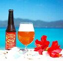 【ふるさと納税】奄美群島地ビール AMAMIGARDEN P...