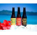【ふるさと納税】奄美群島地ビール AMAMIGARDEN 全...