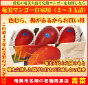 【ふるさと納税】奄美マンゴー自宅用(2〜3玉詰)【送料無料】...