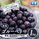 【ふるさと納税】冷凍ブルーベリー(1kg) ジュースやジャムなどの加工品にも!【十曽ブルーベリーつみとり観光農園】