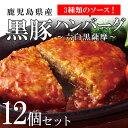 【ふるさと納税】黒豚ハンバーグ〜六白黒薩摩〜 【財宝】
