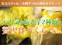 【ふるさと納税】種子島産冷凍焼き芋安納芋 大隅産冷凍焼き芋紅はるか【甘いも販売所】【ポイント10倍】