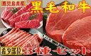 【ふるさと納税】超希少部位!鹿児島県産黒毛和牛シャトーブリア...
