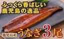 【ふるさと納税】鹿児島県産 特上うなぎ145g×3尾【財宝】...