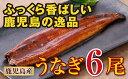 【ふるさと納税】鹿児島県産 特上うなぎ145g×6尾【財宝】