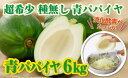 【ふるさと納税】酵素や栄養たっぷり!健康食材、青パパイヤ (6kg:5〜10玉) 酵素パパインを含んだ注目食材!【財宝】
