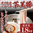 【ふるさと納税】M-801 鹿児島産ブランド豚!茶美豚しゃぶ...