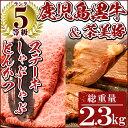 【ふるさと納税】T-1901 鹿児島黒牛のステーキやロース!...