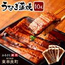 【ふるさと納税】【64460】大隅産うなぎ蒲焼10尾...