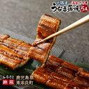 【ふるさと納税】満足サイズ大隅産うなぎ蒲焼 5尾 鰻 ウナギ...