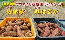 【ふるさと納税】【20564】東串良のサツマイモ5kg×2種...