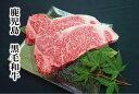 【ふるさと納税】鹿児島県産黒毛和牛サーロインステーキ(約200g×2枚)