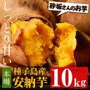 【ふるさと納税】種子島産 安納芋(10kg)【砂坂展恵】