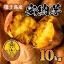 【ふるさと納税】種子島産 安納芋(10kg)【さんこうファーム】